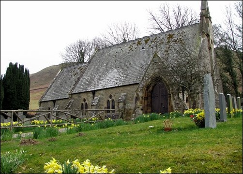 Daffodils in Wythop Church Yard